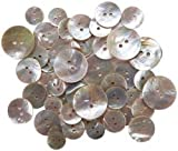 Bulk Buy: Blumenthal Lansing Favorite Findings Shellz Buttons Multi Size Round Agoya 18000-1802 (6-Pack)