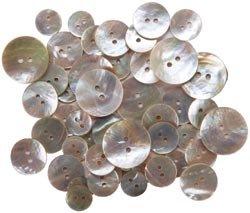 Bulk Buy: Blumenthal Lansing Favorite Findings Shellz Buttons Multi Size Round Agoya 18000-1802 (6-Pack) Blumenthal Lansing Company