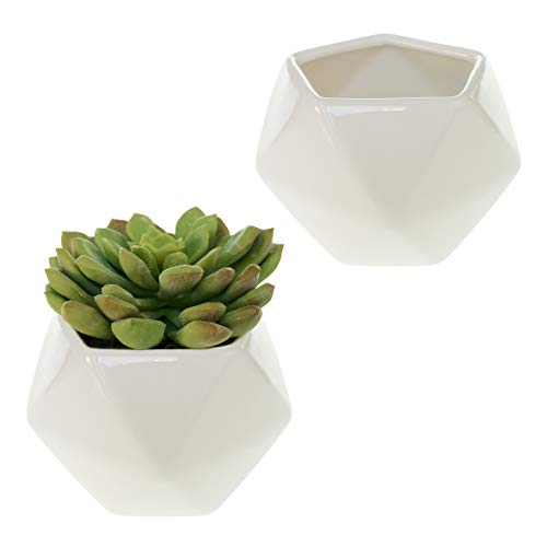 - White Geometric Ceramic Planter Vases - Set of 2 - 3.5 x 2.5 Inches - Ideal as Herb or Succulent Pots for Home, Business, and Event Decor