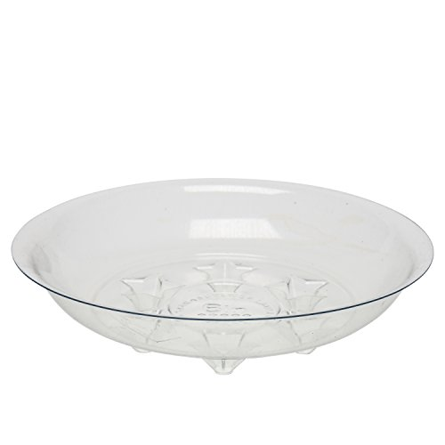 Ashbrook Outdoors Plastic Plant Saucers - 6 Inch | 20 Pack - Clear Vinyl Planter Trays