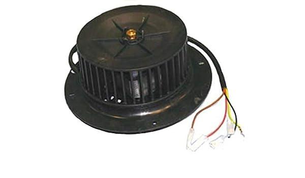 ANCASTOR Motor Campana EXTRACTORA Universal 230V. FER41CU0030: Amazon.es: Hogar