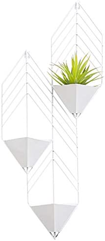ADAHX Macetero Geométrico para Colgar en Pared, para Jardines Interiores Jarrón Metal Decorativo Plantas Suculentas Tillandsias Cactus Pequeños Plantas Maceta Soporte,Blanco: Amazon.es: Hogar