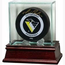Steiner Sports Glass Puck Case (Nhl Hockey Puck Display Case compare prices)