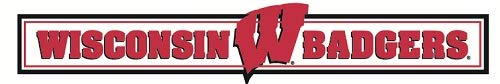 Wisconsin Badgers Ncaa Peel - 9 inch Wisconsin Badgers Logo Decal UW University WI Removable Wall Sticker Art NCAA Home Room Decor 9 by 1 1/2 inches