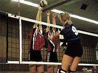 Volleyball-Turniernetz DVV I Huck