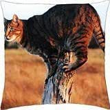 The Watcher. - Throw Pillow Cover Case (18
