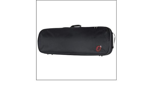 Amazon.com: ESTUCHE VIOLA REF. 920 (78x25,5x20x10,5cm ...