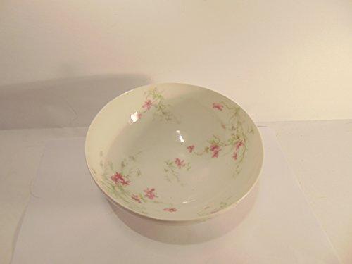 Theo Haviland Fine Limoges Porcelain 6