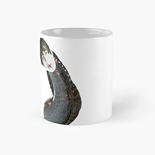 Age Leafyishere Leafyissnake Snake 11 Oz Coffee -