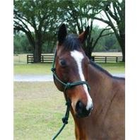 Hamilton Rope Halter with Lead Adult Horse Color: Hunter Green ()