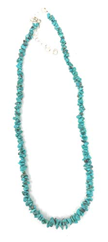 Sleeping Beauty Turquoise Chip Necklace