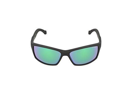 Fuzzy AN4207 Arnette BOILER Translucent Sonnenbrille Grey Black ZzfwRtqOw