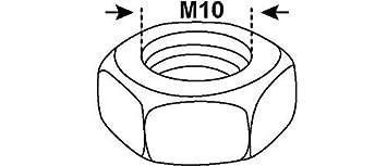 CONNEX Schlossschrauben DIN 603 ISO 8677 Verzinkt Zn M10 x 80 mm Flachrundschrauben mit Vierkantansatz 15 St/ück mit Muttern