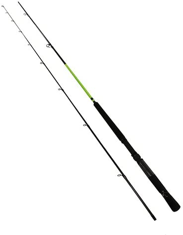 Mr. Crappie Lew s SS Custom Graphite 10-Foot 2-Piece Spinning Rod