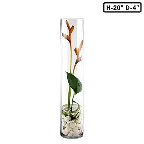 CYS EXCEL Cylinder Vase, H-20 D-4