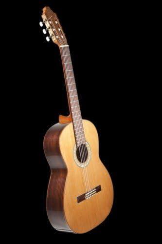 GUITARRA CLASICA - Prudencio Saez Mod. 12 (Iniciacion): Amazon.es ...