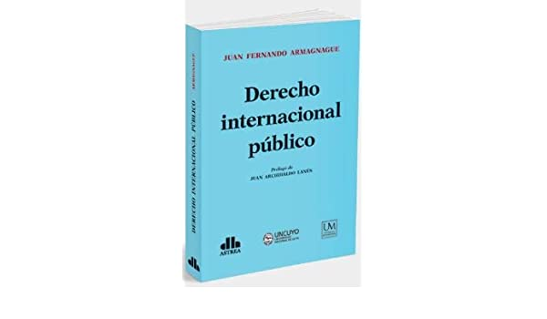 DERECHO INTERNACIONAL PUBLICO: ARMAGNAGUE: 9789877062427: Amazon.com: Books