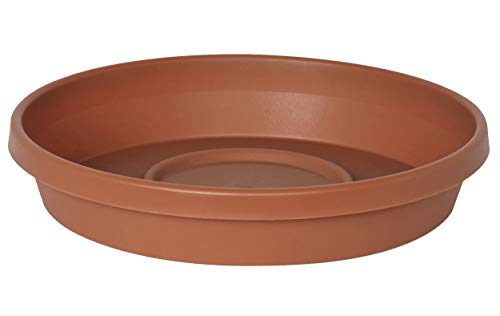Bloem Terra Plant Saucer Tray 11
