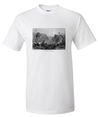 New York - View of the Niagara River Outlet, Lake Ontario in Distance (White T-Shirt - Niagara Outlets Of Fashion