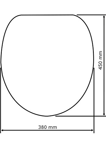 WENKO 20815100 WC-Sitz Hochglanz Acryl Bloom Kunststoff Mehrfarbig 38 x 45 cm mit Absenkautomatik Acryl