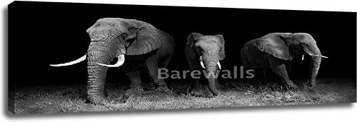 Elephants in Black and White Gallery Wrapped Canvas Art (20in. x 60in.)