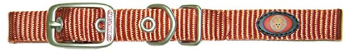 Dog Collar Red Brick (Hamilton B ST 14RB Brushed Hardware Single Thick Nylon Deluxe Dog Collar, 5/8 x 14-Inch, Red)