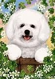 "Bichon Frise 2 by Tamara Burnett St. Patricks Day Garden Dog Breed Flag 12"" x 17"""
