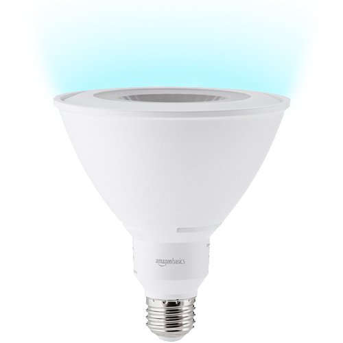Led Light Bulb Basics in US - 7