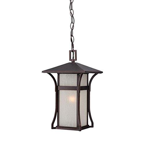 Acclaim 96026ABZ Tahiti Collection 1-Light Outdoor Light Fixture Hanging Lantern, Architectural Bronze