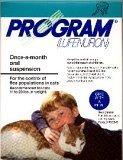 flea program - 4