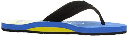 Quiksilver Herren Basis Athletic Sandale Schwarz / Blau / Grün