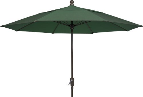 FiberBuilt Umbrellas Terrace Umbrella, 9 Foot Forest Green Canopy and Champagne Bronze Pole (Pattern Ribbed Grade)
