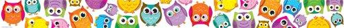 carson-dellosa-colorful-owls-borders-108176