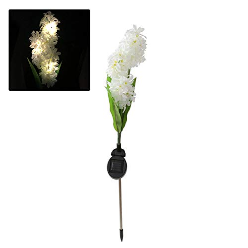 Hyacinth Outdoor Lights in US - 5