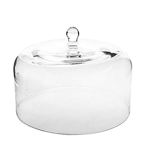 Large Glass Square Cake Cheese Dome Cloche Cover 19.5 x 29.5 cm Roma, Transparent Solavia