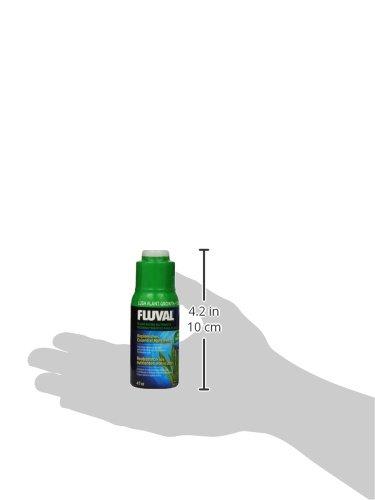 Amazon.com : Fluval Plant Micro Nutrient for Aquariums, 4-Ounce : Aquarium Treatments : Pet Supplies