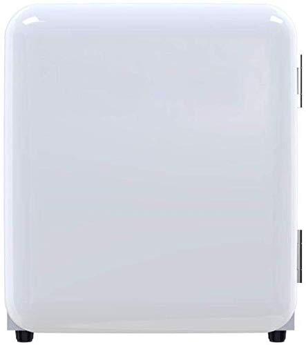 Dljyy Coche de refrigerador portátil Mini refrigerador de Gas ...