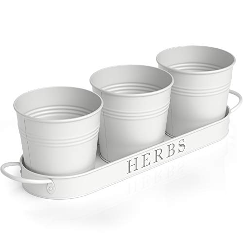 Barnyard Designs Succulent Herb Pot Planter with Tray for Indoor and Outdoor Use French Cottage White Metal Herb Plant Holder (Set of 3, 4.25