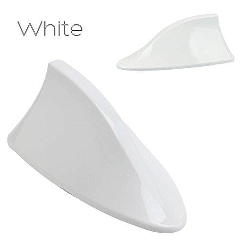 white shark antenna - 4
