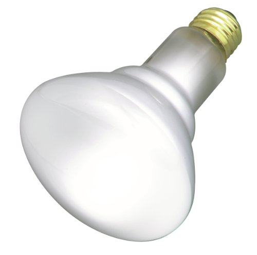 Satco Products S2817 120-Volt 65BR30 Flood Light Bulb, 2-Pack