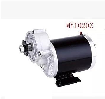 GZFTM MY1020Z - Motor de triciclo eléctrico de 450 W y 48 V, motor cepillado de engranajes DC, motor eléctrico para bicicleta, 48V: Amazon.es: Deportes y aire libre