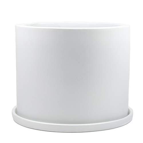 Oak & Boo Large Planter Pot with Drainage Saucer- 8″ – Perfectly Fits Mid-Century Modern Plant Stand for All Indoor Plants (8 Inch Diameter, White)