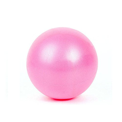 Mini Exercise Ball 10 Inch Stability Ball for Pilates Yoga Barre Training (Pink)