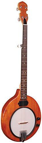 Banjo Electric (Gold Tone EB-5 Electric Banjo)