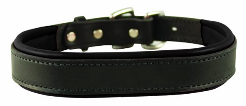 Perri's Padded Leather Dog Collar, Black/Black, Large 1.25 inch x 25 inch fitting dogs with 16 - 20 inch necks