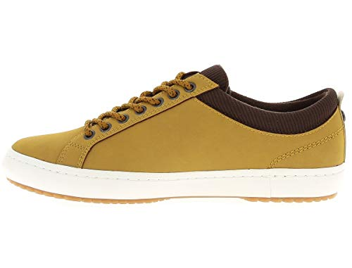 Straightset Miel Lacoste Wxyenxx Lacoste Straightset For Miel rpIxzqr