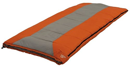 ALPS Mountaineering Crater Lake +20 Degree Sleeping Bag, Regular