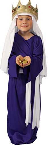 Alexanders Costumes Story of Christ Biblical Gown Child Costume, Purple, Large ()