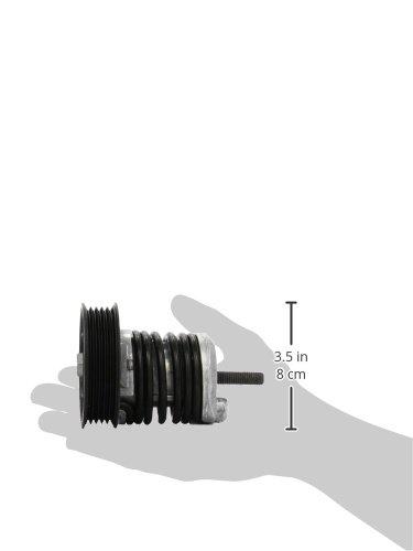 Cinghia Poly-V INA 534 0185 10 Tendicinghia