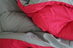 Gray/Pink College Comforter - Twin XL Twin Extra Long